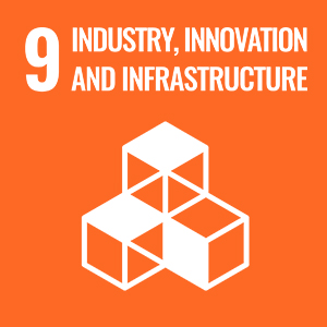UN Sustainable Development Goals - Industry, innovation and infrastructure